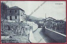 VARESE COCQUIO TREVISAGO 10 Cartolina viaggiata 1930