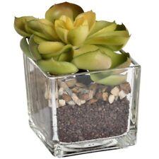 Lotus Lithops In Glass Pot - Miniature Artificial Succulent Cactus Houseplant