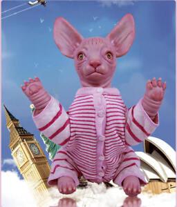 """Realistic lifelike reborn doll toy soft silicone vinyl/cloth body Sphynx cat 18"""""""