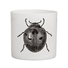 Bloomingville Teelichthalter Käfer