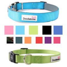 Doodlebone BOLD DOG COLLAR Puppy Adjustable Stylish Bright Padded Strong Nylon