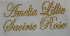 Personalised glitter iron on transfers to fit area size 5cmx20cm in 8 colours