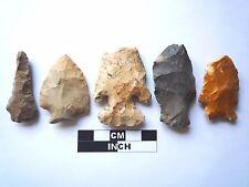 Native American des pointes x 5, véritable archaïque Artifacts, 1000BC-8000BC (961)