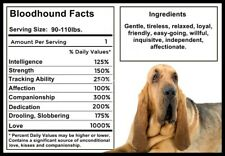 Bloodhound Facts Magnet