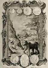 1735 Antique fantastic copper engraving of a LEOPARD. Big Cats. Lions. Leopards.