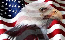 American flag eagle Camper Rv motorhome mural vinyl graphic decal wrap
