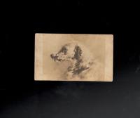 Scottish Deerhoud Red Deer Hunting Dog 1878 Edwin Landseer Art Cabinet Card