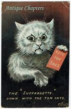 1908 William Henry Ellam Suffragette Down With The Tom Cats  Postcard A685