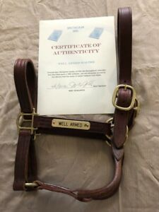 WELL ARMED HALTER