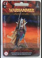 Black Ark Fleetmaster Cities of Sigmar Anvilgard Warhammer Age Sigmar Dark Aelve