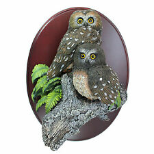 The Gray Rock Collection Pair of Northern saw-whet Owl Resin 3D Wall Figurine
