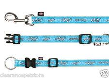 Ensemble correspondant chien chiot sport bleu chien collier & lead S-M 30-45cm col 1,2 m de plomb