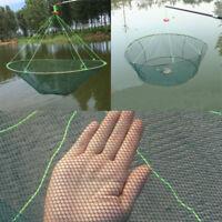 Foldable Prawn Bait Minnow Shrimp Drop Fishing Net Pier Harbour Green Pond Mesh