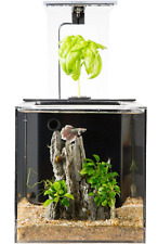 EcoQubeC Aquarium - Desktop Betta Fish Tank For Living Office And Home Déco