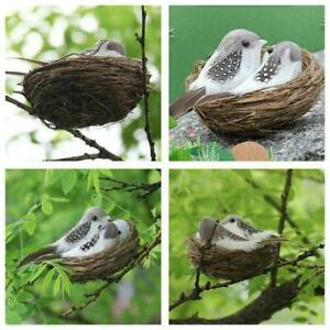 1 Set Realistic Feathered Birds With Nests & Birds Birds Crafts 8U8 Egg M1N7