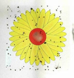 3 Fly Insects Killer Bugs Flower Window Sticker Glue Sticky Traps Non-Toxic UK