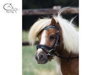 Busse Little Pony Mini Shetland Bridle Black Leather & Reins 3 Designs FREE P&P