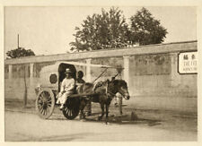 c.1910s PHOTO CHINA - TANNER A PEKING CART