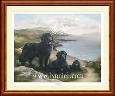 NEWFOUNDLAND Newfie dog art print 'Eventide'