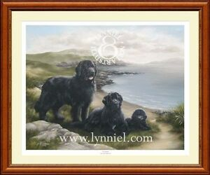 NEWFOUNDLAND Newfie dog art print 'Eventide'