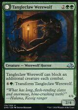4x tangleclaw Werewolf/fibrous entangler | NM/M | Eldritch Moon | Magic MTG