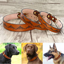 Genuine Leather Dog Collar Mountain Print Adjustable With Gold Buckle Rottweiler
