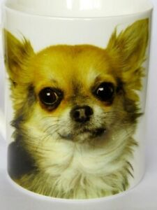 Fine Bone China Mug Cup Beaker Chihuahua Long Haired Dog HEAD BF