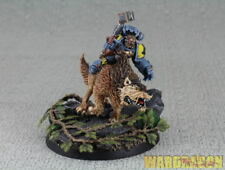 Warhammer 40K Space Wolves WDS painted Thunderwolf Cavalry e36