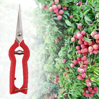 Plante Élagage Ciseaux Jardin Jardinage Bonsaï Fleur Couteau Cisailles Outil