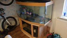 juwel vision450L BOWFRONTED fish tank