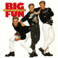 BIG FUN A Pocketful Of Dreams CD Album 1990 RAR & WIE NEU Blame It On The Boogie