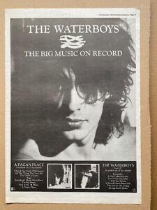 WATERBOYS THE BIG MUSIC POSTER SIZED original music press advert from 1984 - pri