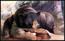 Black Bear Country - Chart Counted Cross Stitch Patterns Needlework Dmc Color