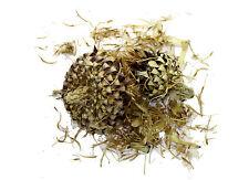 Not Flavored Flowering/Blooming Tea & Tea Making