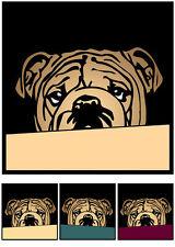 Englische Bulldogge No.21 Pop Art Bild Hundebilder Bilder Poster Fotos Hund Tier