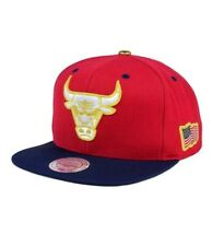 NBA Chicago Bulls Mitchell & Ness USA 2 Tone 2.0 Snapback Cap Hat OSFA $34.99