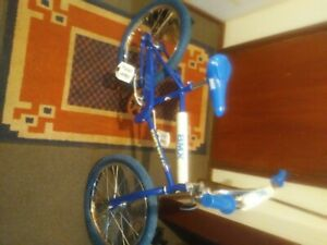 bmx old school vintage 30 years old but still in shop condition