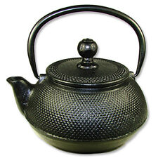 Black Large Japanese Style Cast Iron Tea Pot with Filter Decor Gift