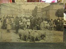 cpa 50 cherbourg le marché aux bestiaux moutons place divette gros plan