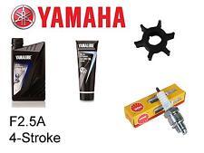Yamaha F2.5A 2.5hp 4-Stroke Outboard Service Kit