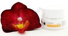 Dr. Hauschka Lippenkosmetikum - Lip Balm 4.5ml