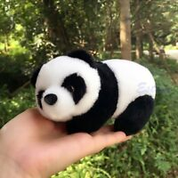 "NEW 16cm 6"" Cute Panda Bear Plush Doll Toy Kids Baby Small Soft Stuffed Animal"