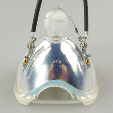 Bare Bulb LMP-H202 for Sony VPL-HW55ES/VPL-VW95ES/VPL-HW55ES-W Projector Lamp