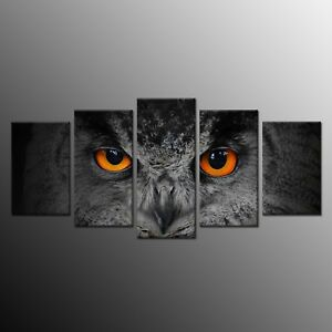 Animals Canvas Print Painting Picture Owl Bird Wall Art Home Decor 5pcs No Frame