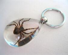 Spider Keychain Acrylic Glass Scary Strange Gift