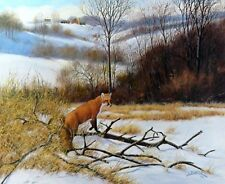 "Silent Hunt Fox Print   By Derk Hansen  21.75"" x 18"""