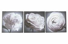 BLACK & WHITE Floral Set of 3 Canvas Wall Art Picture Wall Hanging Home Decor