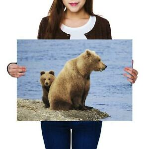 A2 | Brown Bear Family River Animal - Size A2 Poster Print Photo Art Gift #14282