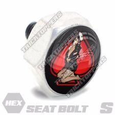 Polished Hex  - Billet Aluminum Seat To Fender Bolt for Harley - PIN GIRL SPADE