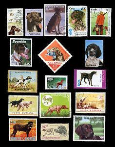 GERMAN SHORTHAIRED POINTER GSP DOG INTERNATIONAL POSTAGE STAMPS x 17 different